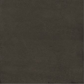 Tsquare Noir Svart 9144