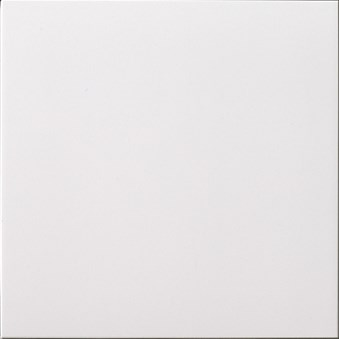 Unicolor Bianco Assoluto polerad 9753