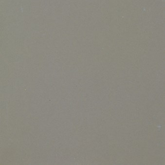 Unicolor Grigio Cenere naturale 9070