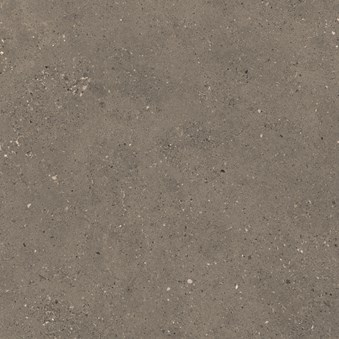 Solida Nut 6623